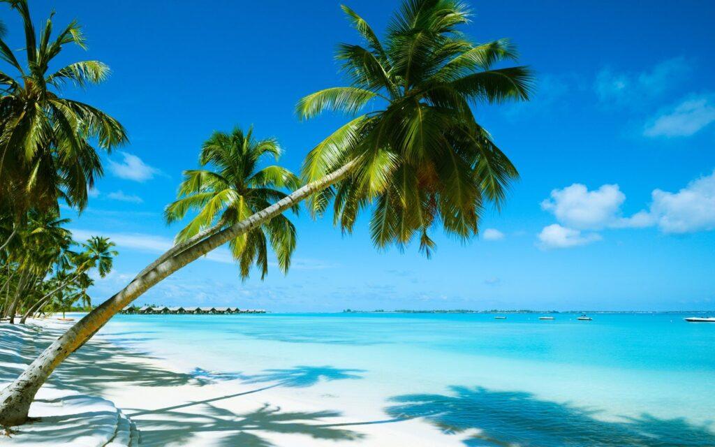 Bahamas: Las 5 cosas que te encantarán hacer en este ícono del Caribe