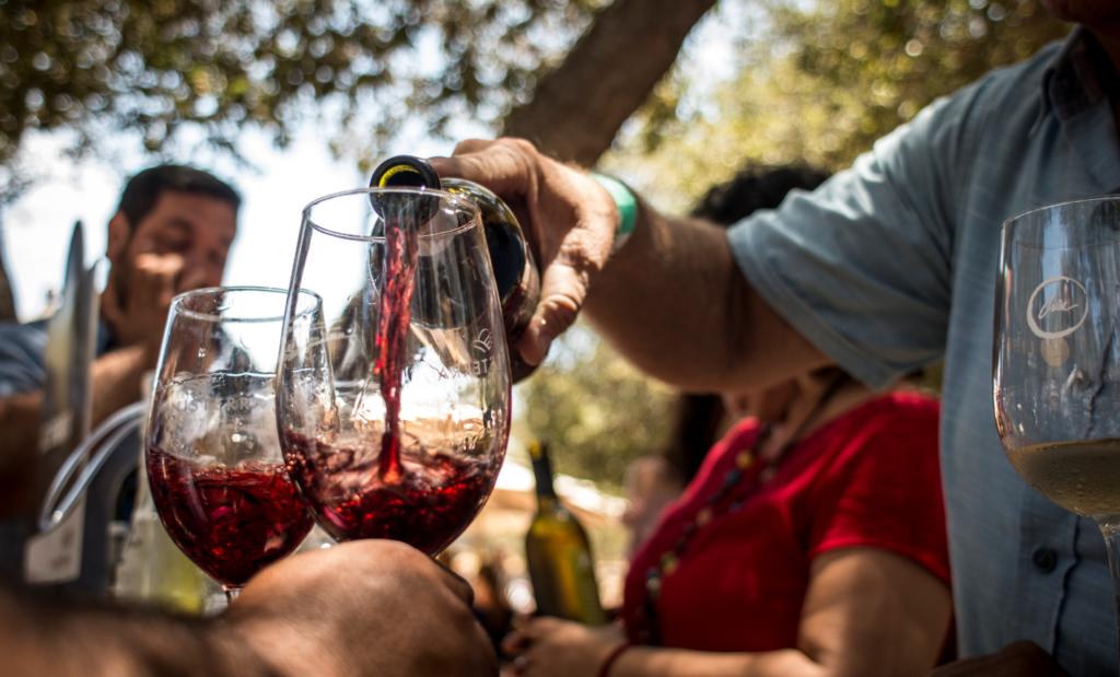 Anuncian las actividades de las Fiestas de la Vendimia en Baja California
