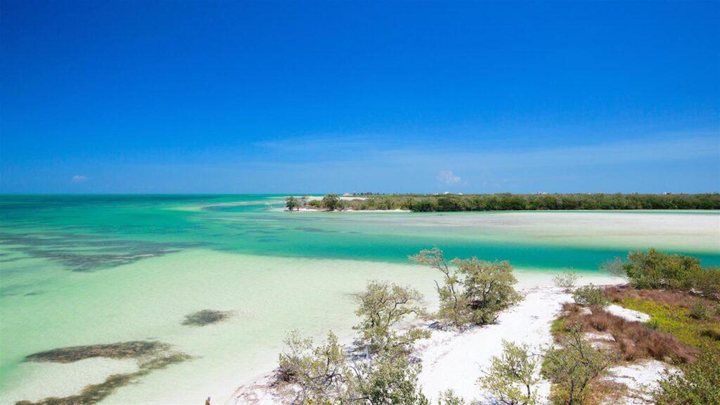 México: La isla secreta que recibe muy pocos turistas y es todo un paraíso